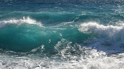 vagues - combinaison longe-côte