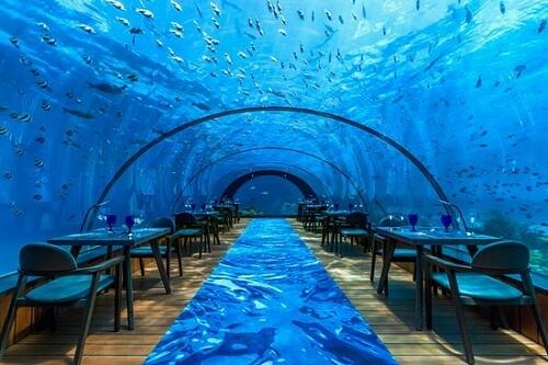 Bien-être - Insolite - restaurants sous l'eau et cie